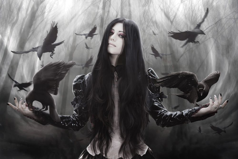 gothic literature the black cat by